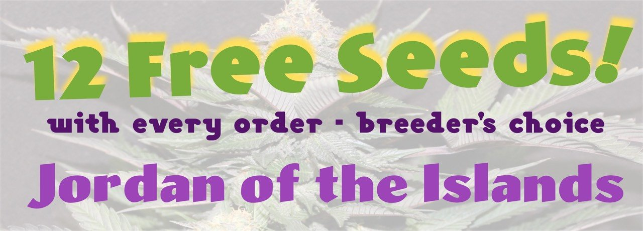 12 Free Seeds with Every Order